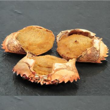 Caparazones de nécora (caja de 50 unidades de 30 gramos)